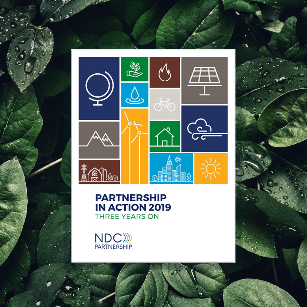 NDCP Partnership in Action Annual Report